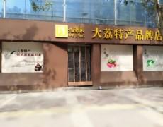 陕西大荔-九阳春特产品牌店