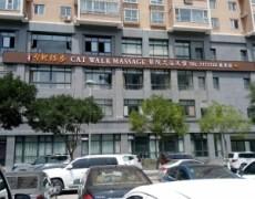 陕西延安-台北猫步最高影院式浴足馆